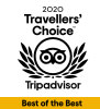 Trip Adviser - Travellers Choice 2020