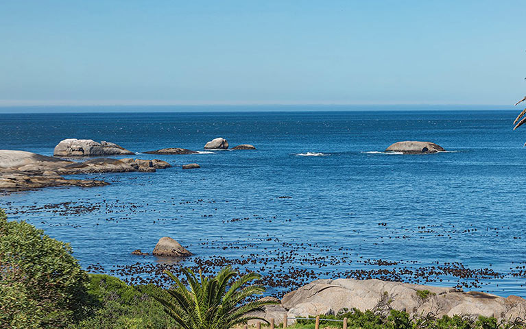 south-beach-camps-bay-pool-terrace-plus-suite-mobile-2